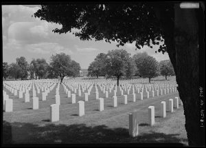 View of gravestones in Wood National Cemetery, the final resting spot of more than 38,000 members of  the US military and their dependents.