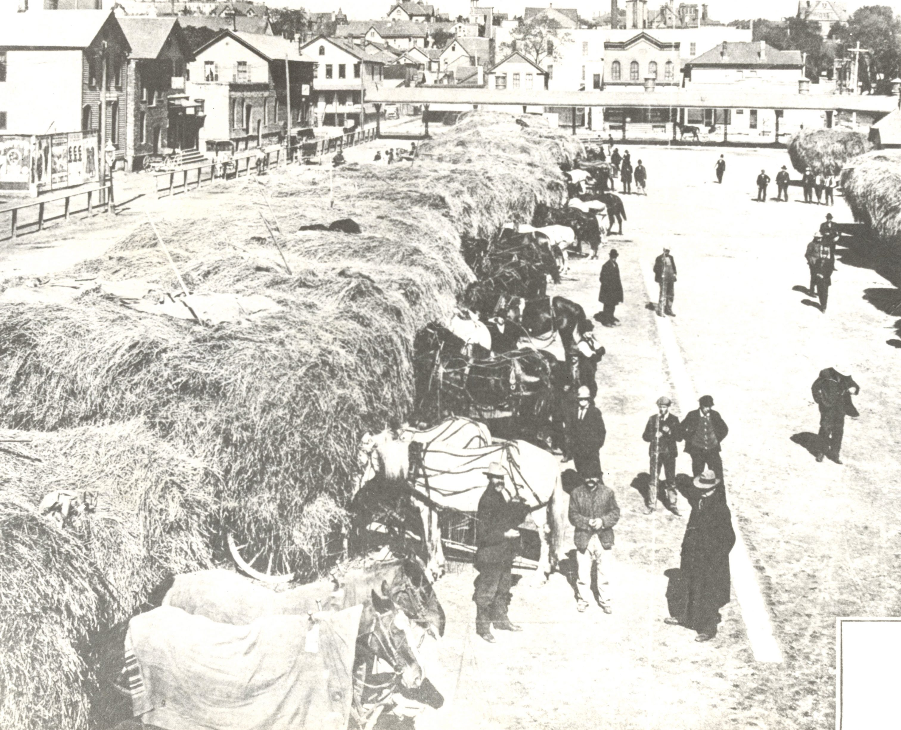 Surplus hay from local farmers is sold at Market Square (now, appropriately, the Haymarket Square area) to in-town users such as the fire department, milk dairies, and vegetable vendors.