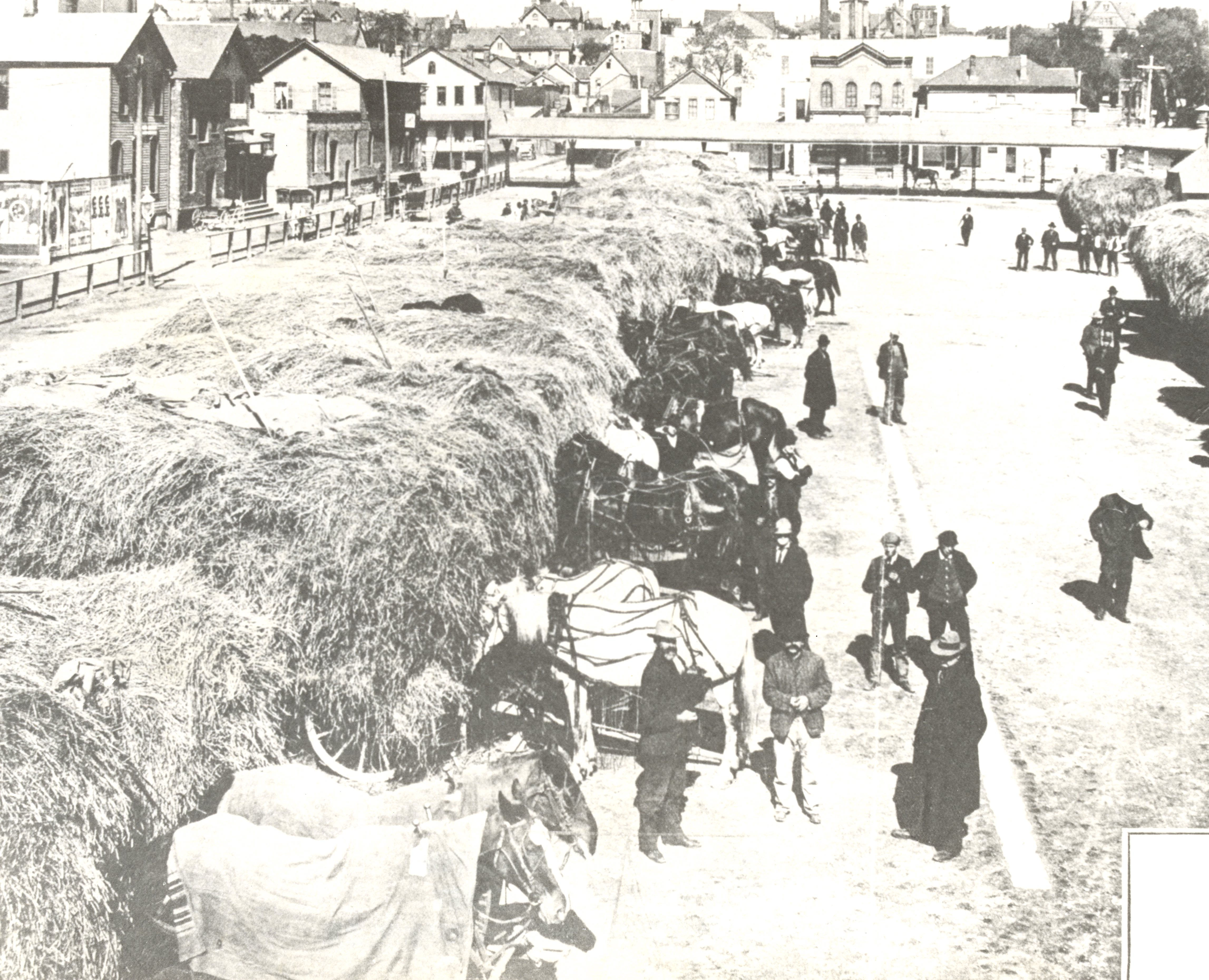 <table class=&quot;lightbox&quot;><tr><td colspan=2 class=&quot;lightbox-title&quot;>Selling Hay at Market Square</td></tr><tr><td colspan=2 class=&quot;lightbox-caption&quot;>Surplus hay from local farmers is sold at Market Square (now, appropriately, the Haymarket Square area) to in-town users such as the fire department, milk dairies, and vegetable vendors.</td></tr><tr><td colspan=2 class=&quot;lightbox-spacer&quot;></td></tr><tr class=&quot;lightbox-detail&quot;><td class=&quot;cell-title&quot;>Source: </td><td class=&quot;cell-value&quot;>From the Historic Photo Collection of the Milwaukee Public Library. Reprinted with permission.<br /><a href=&quot;http://content.mpl.org/cdm/singleitem/collection/HstoricPho/id/1214/rec/7&quot; target=&quot;_blank&quot;>Milwaukee Public Library </a></td></tr><tr class=&quot;filler-row&quot;><td colspan=2>&nbsp;</td></tr></table>