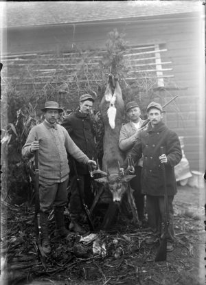 Four Milwaukee men display the deer they shot while hunting in November of 1913.